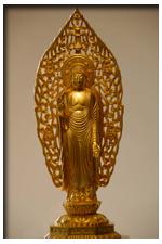 buddhainset